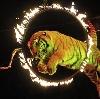 Цирки в Никольском
